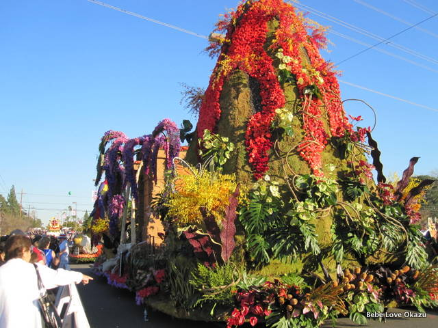 2013 Rose Float - 15