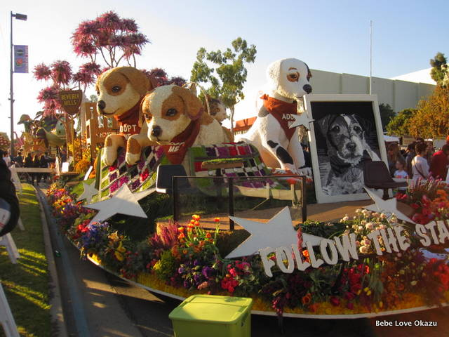 2013 Rose Float - 17